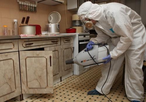 Эффективные средства для травли тараканов в квартире.