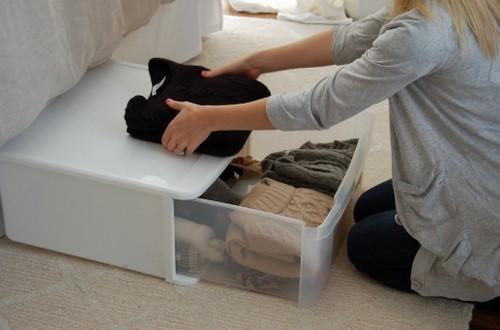 Хранение одежды: способы защиты от комнатной моли.