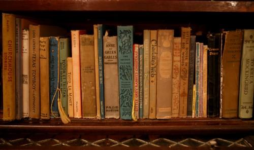 Клопы могут быть на книжных полках.