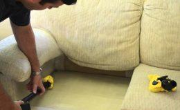 Способы выведения диванных клопов